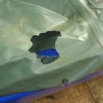 повреждение надувной лодки грызунами